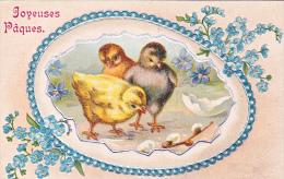 23817 Joyeuses Paques  -  Coq Poule Poussin Oeuf Myosotis - Dessin Relief -  Editeur Kopal Mark 1002