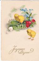 23818 Joyeuses Paques  -  Coq Poule Poussin Oeuf Myosotis - Dessin -  éd Jounok? 216 - Pâques
