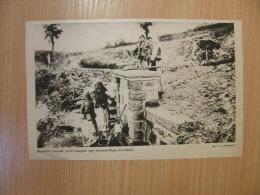 Serbia Morava Valley Spring  -Young Women -  WWI-grande Guerre 1916-18 -   W69 - Autres