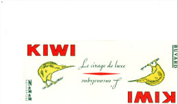 -  BUVARD Pub Cirage KIWI - 922 - Schuhe