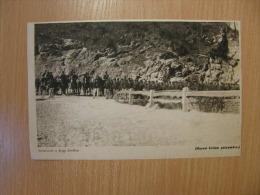 Austro-Hungarian Army - Italian Battlefield ?     WWI-grande Guerre 1916-18 -   W73 - Army & War