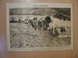 Battlefield Russia -Poland  (Ukraine)  - Tranporting Munition ,ammo -    WWI-grande Guerre 1916-18 -   W77 - Autres