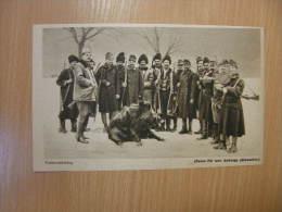 Austro-Hungarian Officers  Ukraine Galizien Hunting - Wild Boar  - Grande Guerre  - WWI-1914-18 -print   W156 - Militares