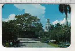 Parque Y Arbol De Fraternidad - En El Fondo Compania Cubamna De Telefonos - Cuba