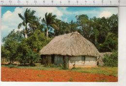 Bohio Cubano (Tipica Viviendo Campesina) - Cuba