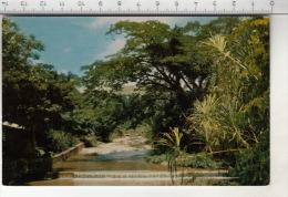 Vista Del Rio Soroa Que Serpente Entre Las Montanas Y Va Despenarse A Una Profundidad De 23 Metros - Cuba