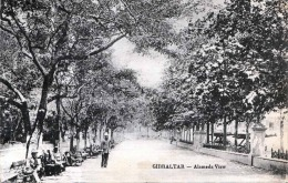 GIBRALTAR - Alameda View, Karte Gel.190?, 1P Frankierung - Gibraltar