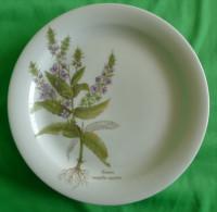 Vintage German Pottery Germany Tirschenreuth Bavaria Collector Plate Veronica Anagallis-aquatica - Tirschenreuth (DEU)