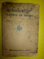 ARBORICULTURE FRUITIERE En IMAGES...abimé.....mais Peut être Toujours Utile - Livres, BD, Revues