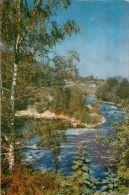 Trotus Valley, Romania Postcard - Romania