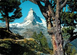 Matterhorn, Zermatt VS, Switzerland Postcard Used Posted To UK 1986 Stamp - VS Valais