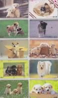 Lot De 10 Télécartes Japon NTT CHIEN Chiens - DOG Dogs Japan Phone Cards - HUND Hunde Telefonkarten - 1150 - Telefonkarten