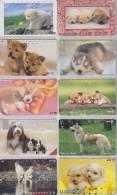Lot De 10 Télécartes Japon NTT CHIEN Chiens - DOG Dogs Japan Phonecards - HUND Hunde Telefonkarten - 1152 - Télécartes