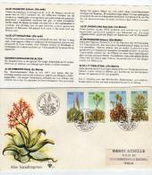 R  497  Carta Windhoek 1981 Sudafrica - África Del Sur (1961-...)