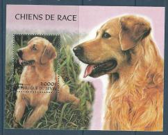 """Benin Bloc YT ??? Non Référencé """" Chiens De Race """" 2000 Neuf** - Bénin – Dahomey (1960-...)"""