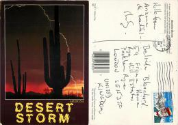 Saguaro Cactus Desert Storm, Arizona, United States US Postcard Posted 1988 Stamp - Lost Dutchman Mine