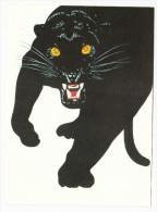 BD - Illustration Henri Galeron - Le Livre De La Jungle (panthère) - Postkaarten