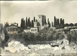 CONEGLIANO  TREVISO   Il Castello - Treviso