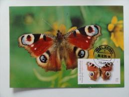 CARTE MAXIMUM MAXIMUM CARD  PAPILLON INACHIS IO ALLEMAGNE RARE - Papillons