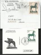 FRANCE 1996 Timbre Sur Lettre N°3014 Bronze + Carte Souvenir - France
