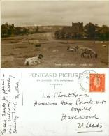 Goathland, Yorkshire Postcard 1941 Stamp Judges RP - Whitby