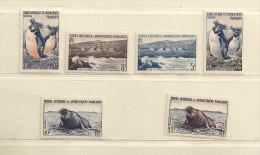 T.A.A..F.  ( D16M - 585 )   1956   N° YVERT ET TELLIER  N°  2/7    N** - Französische Süd- Und Antarktisgebiete (TAAF)
