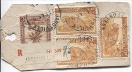Belgisch Congo Belge TP 240(3)-235 Ou 255 S/Echantillon Sans Valeur C.Jadotville En 1945 PR699