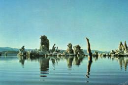 Album Steeve Insert For Pink Floyd - Zonder Classificatie