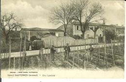 CPA  SAUTERNES, Cru Lanère, Ouvriers Dans Les Vignes  10130 - Non Classificati