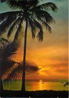 Mombasa Sunrise, Kenya Postcard Used Posted To UK 1990s Stamp - Kenya