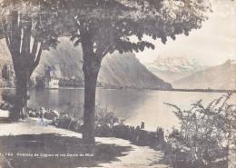 Ph-CPSM Suisse Lac Léman (VD Vaud) Château De Chillon Et Les Dents Du Midi - VD Vaud