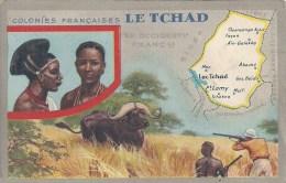 COLONIES FRANCAISES - TCHAD - NDJAMENA - 1954 - VOIR descriptif au DOS - Pub : Cirage Lion Noir