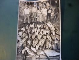 Photographie  12 X 17 Cm Gabon  Port Gentil Peche ?  Enorme Peche Gros  Poissons - Pêche
