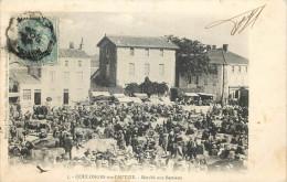 79 - COULOGNES-sur-L'AUTISE - Le Marché Des Bestiaux - (voir Scan Recto-verso) - Coulonges-sur-l'Autize