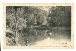 Cp, 94, Champigny, Berge De La Rive Gauche, Voyagée - Champigny Sur Marne