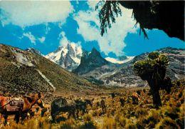 Mount Kenya, Kenya Postcard - Kenya