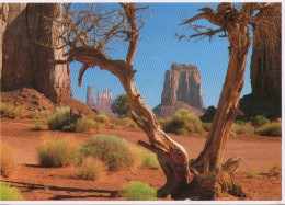 Etats-Unis - Monument Valley Navajo Tribal Park - Monument Valley