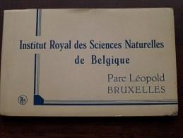 Inst. Royal Des SCIENCES Naturelles - Carnet 20 Cartes Vues / Compleet ( PK / CP - Zie Foto´s Voor Details ) !! - Musées