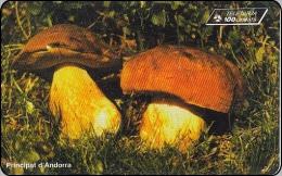 Andorra Phonecard  Pilze Mushrom - Andorra