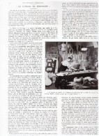1936  Le Luthier De Mirecourt Violon  Fabrication De - Ohne Zuordnung