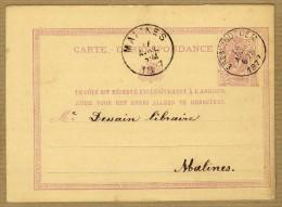 Carte Correspondance Entier Postal 1877 Erembodegem à Malines - Postwaardestukken