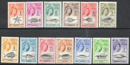Tristan Da Cunha 1961 - Marine Life SG42-54 MNH Cat £80 SG2014 - Tristan Da Cunha