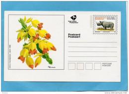 MARCOPHILIE-carte  -entier Postal-l Illustrée- Fleurs--south AFRIKA-+rhinocéros - Afrique Du Sud (1961-...)