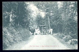 Cpa De Jamaïque Jamaica B.W.J.  , On The Road To Castleton   MAI2 - Jamaïque