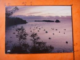 35-8) Cote  D´emeraude : Crepuscule Sur L'ile Des Rimains - Francia