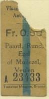 BILLETE DE GAVINAS (MOUETTES) DE ANVERS // 1929 // (REF 262) - Schiffstickets