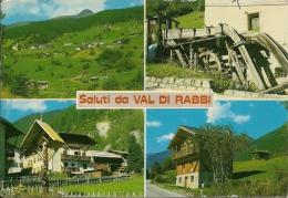 PIAZZOLA DI RABBI  TRENTO  Fg - Trento