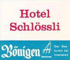 SWITZERLAND BOENIGEN HOTEL SCHLOESSLI VINTAGE LUGGAGE LABEL - Hotel Labels
