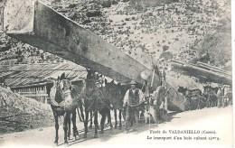 20 - FORET DE VALDANIELLO : LE TRASPORT D'UN BOIS CUBANT 14 M3 9.SUPERBE ! - France