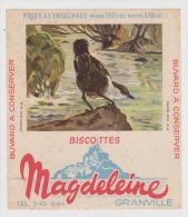Buvard - BISCOTTES MAGDELEINE GRANVILLE - N° 10 Cincle Aquatique - - Biscottes
